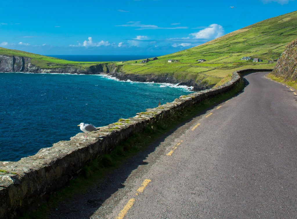 Single Track Coast Road i Slea Head i Ireland